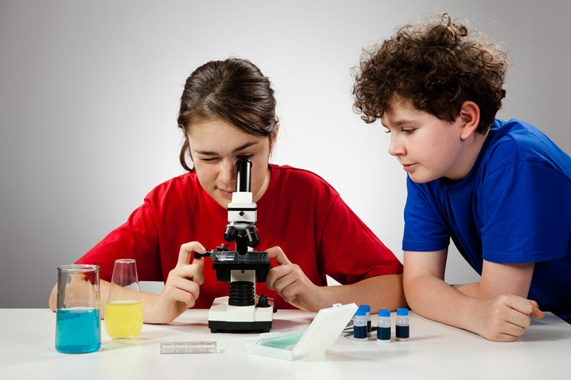 Best Microscopes for 10 Year Olds
