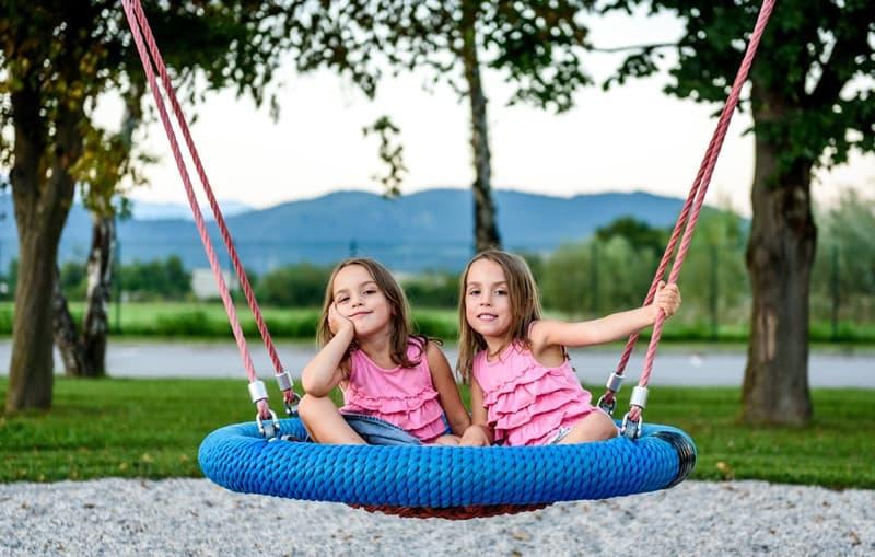 Best Backyard Tree Swings