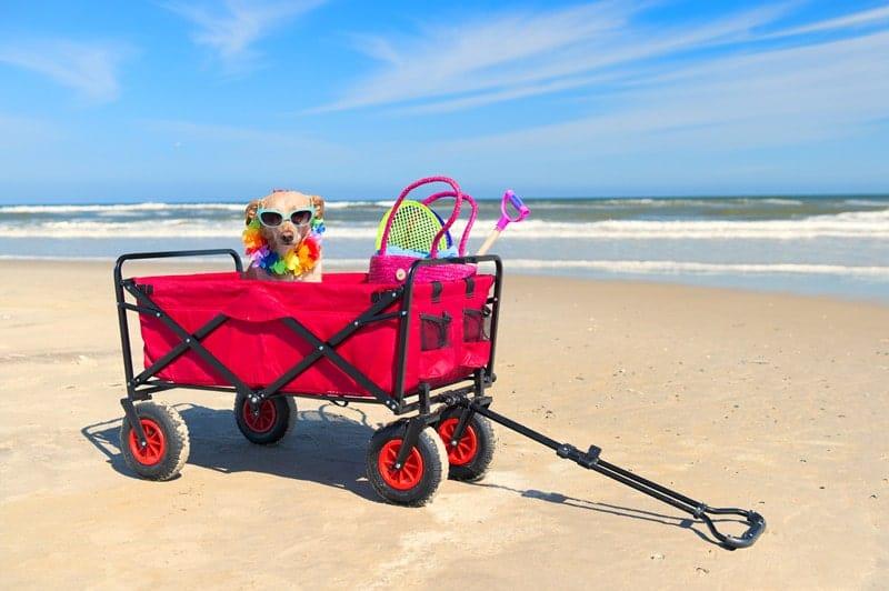 Best Beach Carts