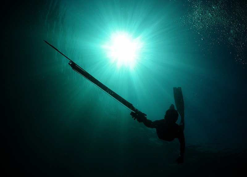 Bluewater Spearfishing-Everything You Need to Know
